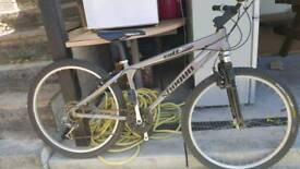 Brilliant bicycle SHOGUN CULT