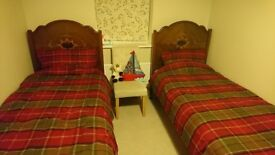 Matching pair of antique single bed frames