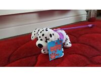 Barking Dalmatian Puppy On A Lead