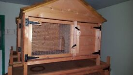 RABBIT HUTCH APEX