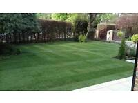 Profesional turf for your garden