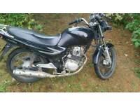 SYM XS125-K