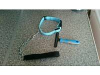 For sale dog lead, collar + brush brand new