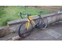 Road Bike TEMAN