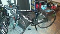 specialized secteor