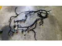Peugeot 307 9HX 1.6hdi Complete Engine wiring harness