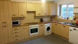 Warm and clean furnished single bed room including all bills