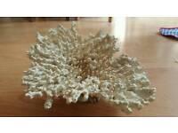 "Fish tank coral affect ornament 9"" x 6"""