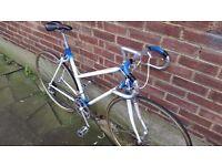 Vintage Lightweight 12 Speed Road Bike in Perfect Order