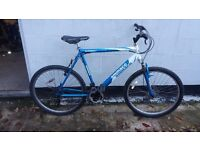 "MANS EXTRA LAREGE MOUNTAIN BIKE 23"" FRAME "" I can deliver"""