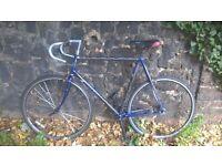 Carbon-Frame Perfect-Order Single-Speed 25in Trek Road Bike