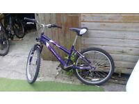 For Sale bike apollo