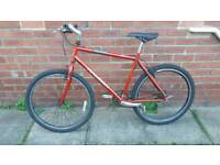 Adults Raleigh Tigershark 24 Gears 20 inch light weight frame Good working condition ready to ride