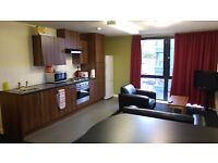DIGS The Pinnacles (Sheffield) 3 Bed Student Flat Room w/ En-Suite Shower