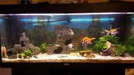 Fish tank and unit with every thing