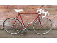 Dawes 531 Race Bike