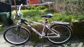 "Ladies aluminium 24gears 15"" bike"