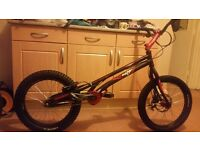 Onza bird trials bike