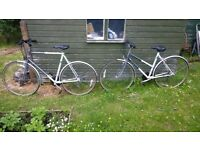 Bicycles, His and Hers. Two Raleigh Action Sport Ladies and Gents Bicycles sold as pair