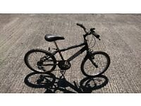 Childs Raleigh bike