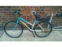 Fully functional bike