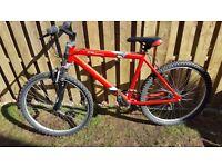 2 red bikes