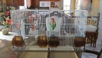cage de reproduction pour oiseaux