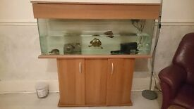 4.5ft x 1ft fish tank with stand for sale
