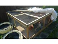 Chickens with coop and house for sale