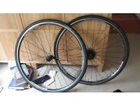 Bontrager road bike wheels with 8 speed cassette
