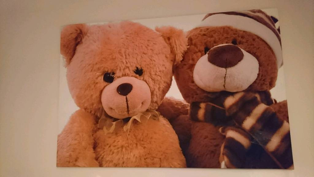 Large Teddy Canvas Picture
