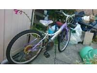 Melody Probike kids Girl bike
