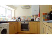 5 beautiful spacious bedroom house 5 bedroom £1,800 pcm| £427 pw