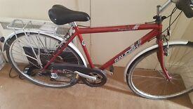 Mens Raleigh Pioneer 120 Bike