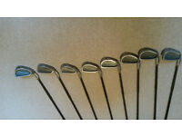 King Cobra 2 Senior Golf Clubs