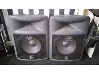Peavey Pro15 speakers faulty