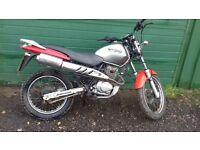 honda city fly,125cc,project,runner