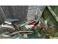 A Schwinn beach bike project