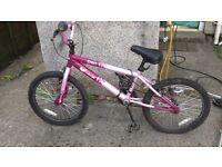 girls vibe envy bike
