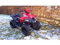Dinli 110cc automatic kids or adults quad