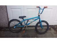 Raleigh Scandal Bout BMX Stunt Bike