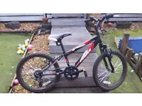 20 inch bike 5 gears and front suspension
