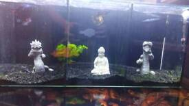 Tri fish tank