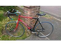 Red Falcon Road Bike