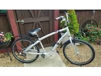 Trek cruiser bicycle.