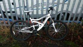 White muddyfox bike