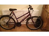 Raleigh Mountain Bike - Excellent Condition