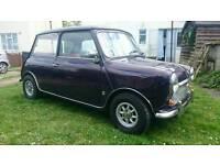 Classic mini mk3 1971 purple