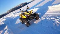 Vtt can am 800