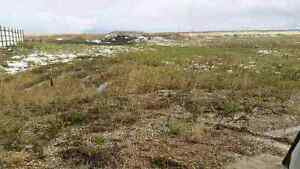 229 Willow Street - Vacant Lot, Pense, SK Ready for Development!